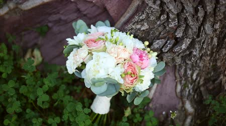 alstroemeria : Bouquet of white, pink and beige flowers on the tree Stock Footage