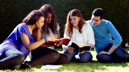 biblia : Group of Young people Studying the Bible together