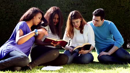 öğrenme : Group of Young people Studying the Bible together