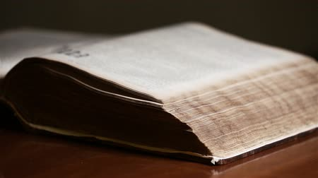 santo : Bible Revealed by Light