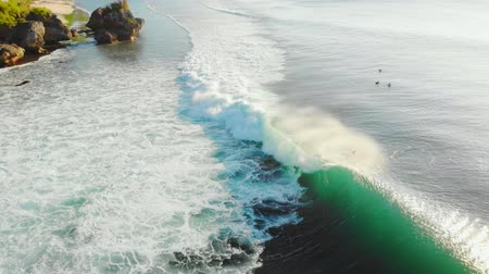 Оаху : Aerial view of barrel green wave in tropical ocean, Bali