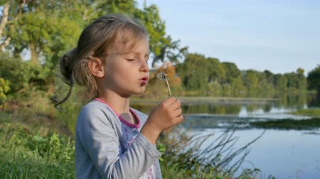 pelyhes : Little Blonde Girl with Blue Eyes Blowing Dandelion During a Day in the Early Autumn on Lake Background.
