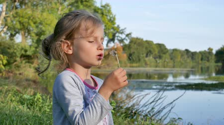 gömbölyű : Cute Little Girl with Blonde Hair Blowing Dandelion During a Sunny Day in the Park on Lake Background. Slow Motion. Stock mozgókép