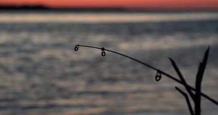 wschód słońca : Fishing on the lake at sunset. Fishing background. Fishing rod at sunset2