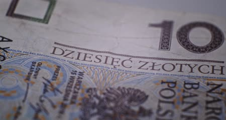 filigran : 10 PLN Deatails CloseUp EU currency
