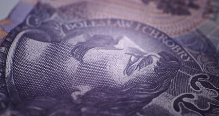 vodoznak : 20 PLN Deatails CloseUp EU currency