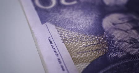 yirmi : 20 SEK CloseUp Deatails EU currency