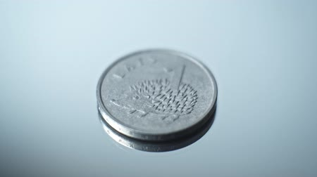richness : 1 lats 2012 - Hedgehog Closeup Coin of the Latvian republic
