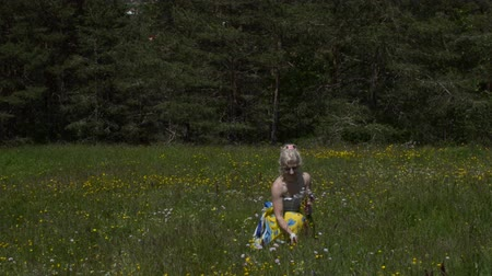 plucked : Woman is picking wildflowers on a meadow, on sunny day