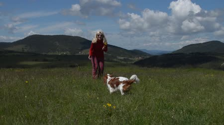 napfény : Lady playing with her dog (Cavalier King Charles Spaniel) running toward camera, in a mountain meadow, with beautiful spring landscape Stock mozgókép