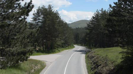 Empty mountain road without traffic through a conifer forest.