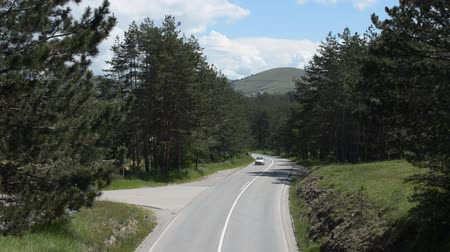 Cars moving towards and below the camera position, on a road among conifer trees in the Zlatibor Mountain, Serbia.