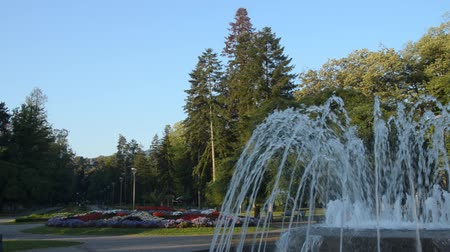 Fountain and flowers in public park of Vrnjacka Banja, Serbia, early in the morning. Panning to the left. Stock Footage