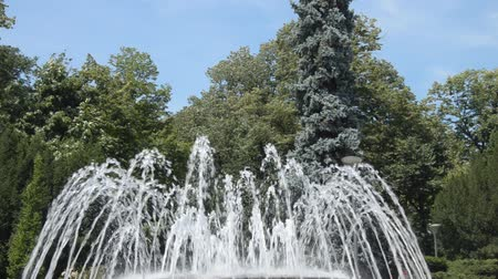 jet out : Fountain water jets changing shapes of spraying in public park in Vrnjacka Banja, Serbia. Stock Footage
