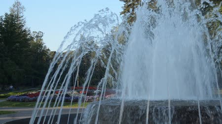 gush : Fountain and flowers in a public park of Vrnjacka Banja, Serbia, in the morning. Panning to the left