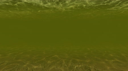 редактируемые : under water of pond animation