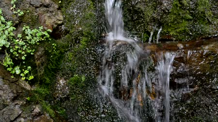 skalní útes : Mountain waterfall. A source. Waterfall Healing water. Water.
