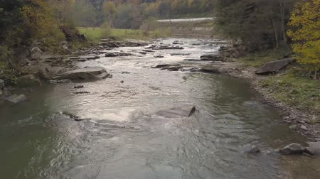 rapids : Moving river in Carpathian Mountains, drone shot Stock Footage