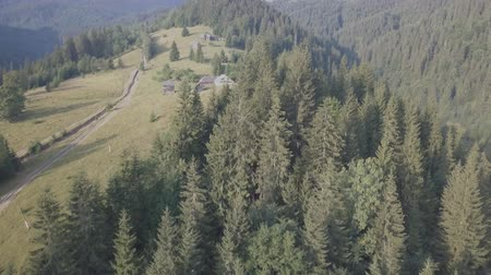 carpathian : Aerial top view of summer carpathian mountains near by Dzembronya village, Ukraine