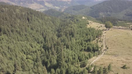 vysílač : Aerial top view of summer carpathian mountains near by Dzembronya village, Ukraine