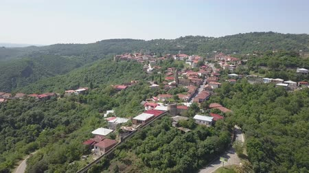 Aerial view of the town of Kakheti. Signagi Wideo
