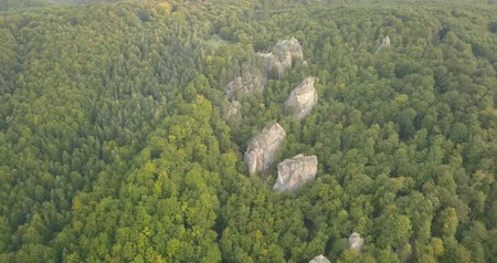 faia : Aerial view of Dovbush Rocks in Bubnyshche Vídeos