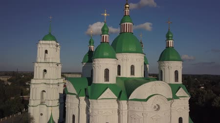 torre : Blessed Virgin in Kozelets, Chernihiv region, Ukraine Stock Footage