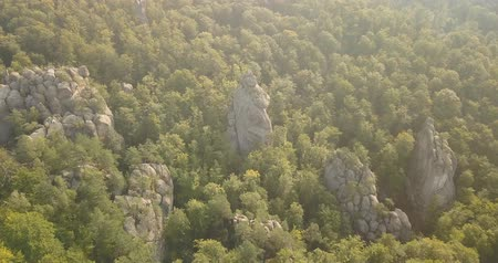 beech tree : Aerial view to Dovbush Rocks in Bubnyshche at sunrise - a legendary place, the ancient cave monastery in fantastic boulders amidst beautiful scenic forests, popular with tourists and travelers in Eastern Europe and Ukraine Stock Footage