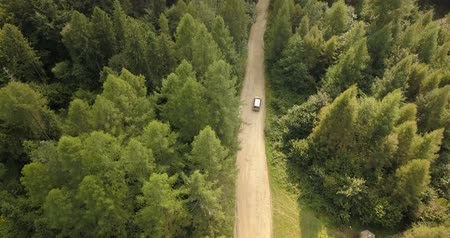 вид сверху : Aerial view of car driving on country road in forest and mountains. Car driving along