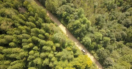 кондиционер : Aerial view of car driving on country road in forest and mountains. Car driving along