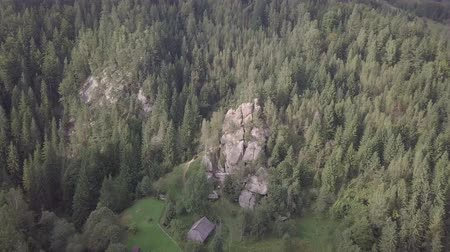 fertilidade : Aerial view stone rocks Ternoshorska Lada amidst beautiful scenic Carpathian mountains and forest. Symbol of motherhood and fertility, Kosiv Region, Ivano-Frankivsk Oblast, Ukraine