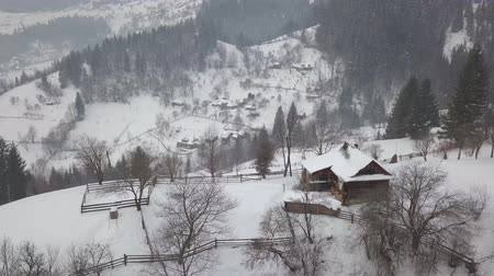 sprookjesbos : Calm and cosy fairy-tale village Kryvorivnia covered with snow in the Carpathians mountains, aerial view. Typical landscape in Hutsulshchyna National Park in Ukraine. Vacation and winter sports.