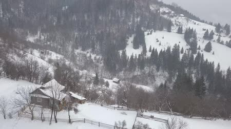 snowy background : Calm and cosy fairy-tale village Kryvorivnia covered with snow in the Carpathians mountains, aerial view. Typical landscape in Hutsulshchyna National Park in Ukraine. Vacation and winter sports.