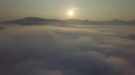 карпатская : Aerial drone view of foggy sunrise over clouds hills and mountains at morning Carpathian mountains