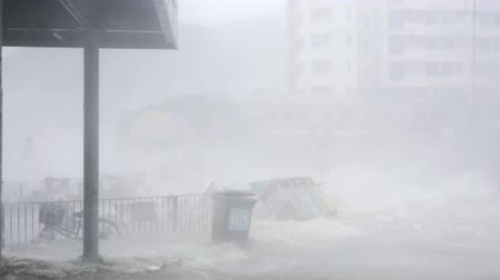 gust of wind : HONG KONG - SEP 16, 2018: Hurricane Typhoon Mangkhut near bus station