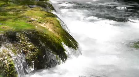 Water Flowing over Rocks Stok Video