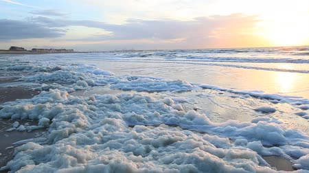 bélgica : Sea foam on the North Sea coast in Knokke-Heist, Flanders, Belgium Stock Footage