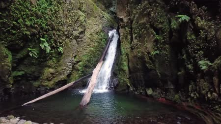 prego : Salto do Cagarrao Waterfall located on Prego river, Sao Miguel Island, Azores, Portugal