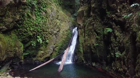 terra : Salto do Cagarrao Waterfall located on Prego river, Sao Miguel Island, Azores, Portugal