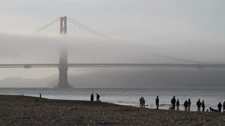 mães : Golden gate bridge with fog and people on a sandy beach Stock Footage