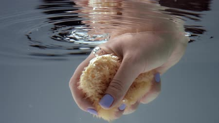 gąbka : woman hand immerse into water with a natural bath sponge to smudge it underwater