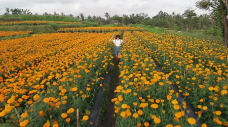 köylü : 4K aerial flying video of woman on a marigold field. Beautiful travel concept. Bali island.