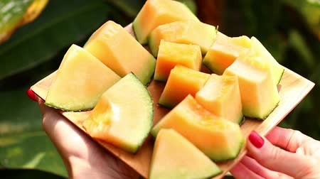мускусная дыня : Women hands with melon in a wooden bowl. Tropical background.