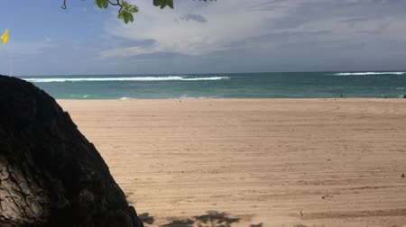 sezon : Tropical beach of Bali island, Indonesia. Nusa Dua. Stok Video