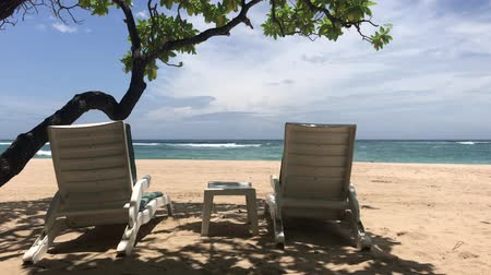 deck chairs : Deck chairs on the tropical beach of Bali island, Indonesia. Stock Footage
