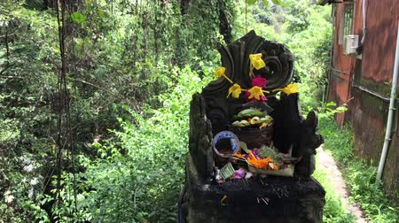 offer : Balinese hindu altar with traditional offerings to gods. Tropical island of Bali, Indonesia.