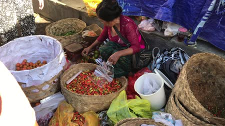 prodávat : BALI, INDONESIA - FEBRUARY 21, 2019: Woman selling vegetables on a local organic market.