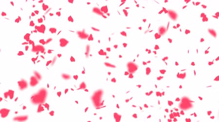 святой : Falling hearts abstract background. Beautiful Saint Valentines Day background. Alpha channel transparency included