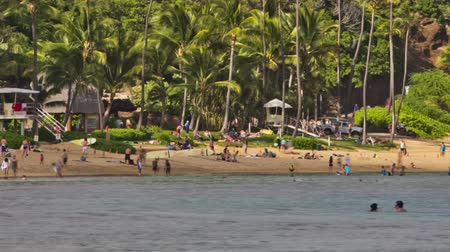 areia : v33. Panning Hanauma Bay Beach Park time lapse clip with people snorkeling and on beach.