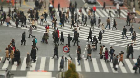 viagens de negócios : v48. Busy Shibuya crosswalk of people crossing using a tilt shift effect.